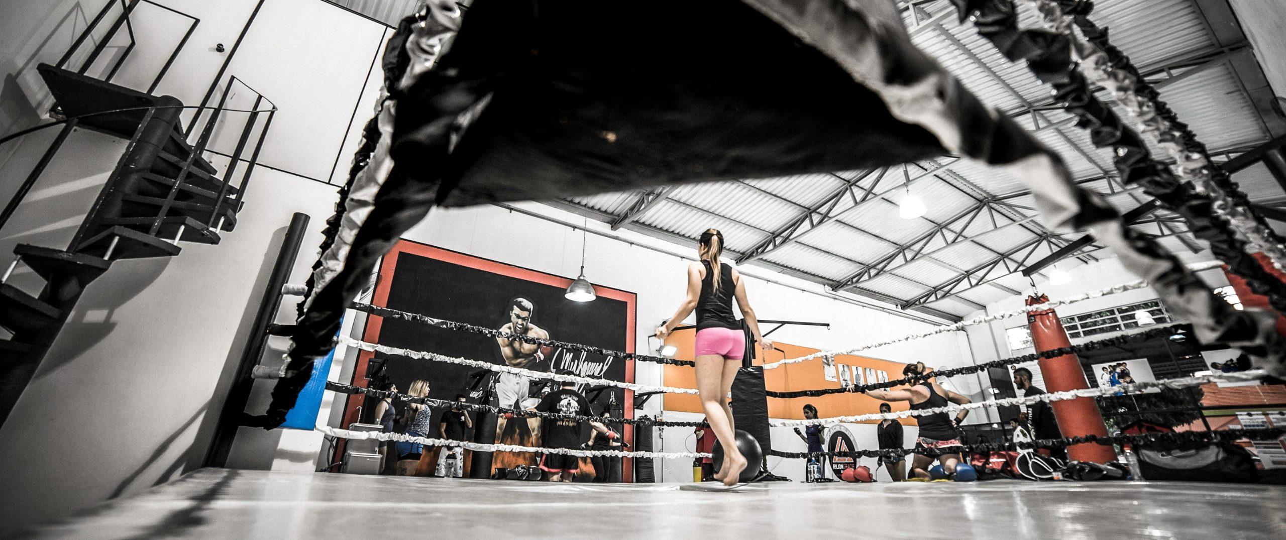 My Boxing Life